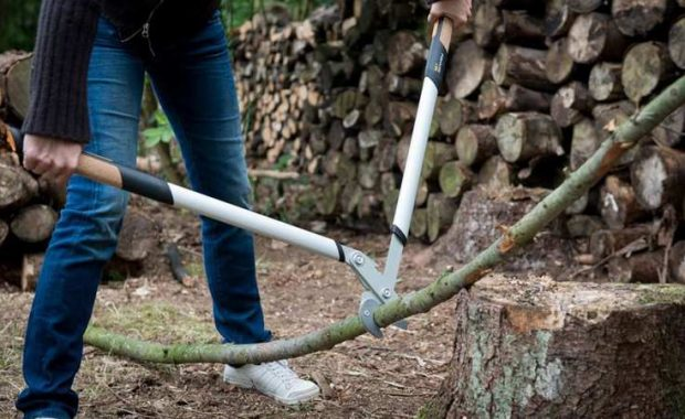 best bypass lopper, how to choose a bypass lopper, fiskars bypass loppers, prunning, gardening tools