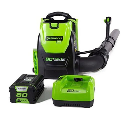 greenworks pro bckpack leaf blower, best bckpack leaft blower, how to choose a backpack leaf blower, leaf blower